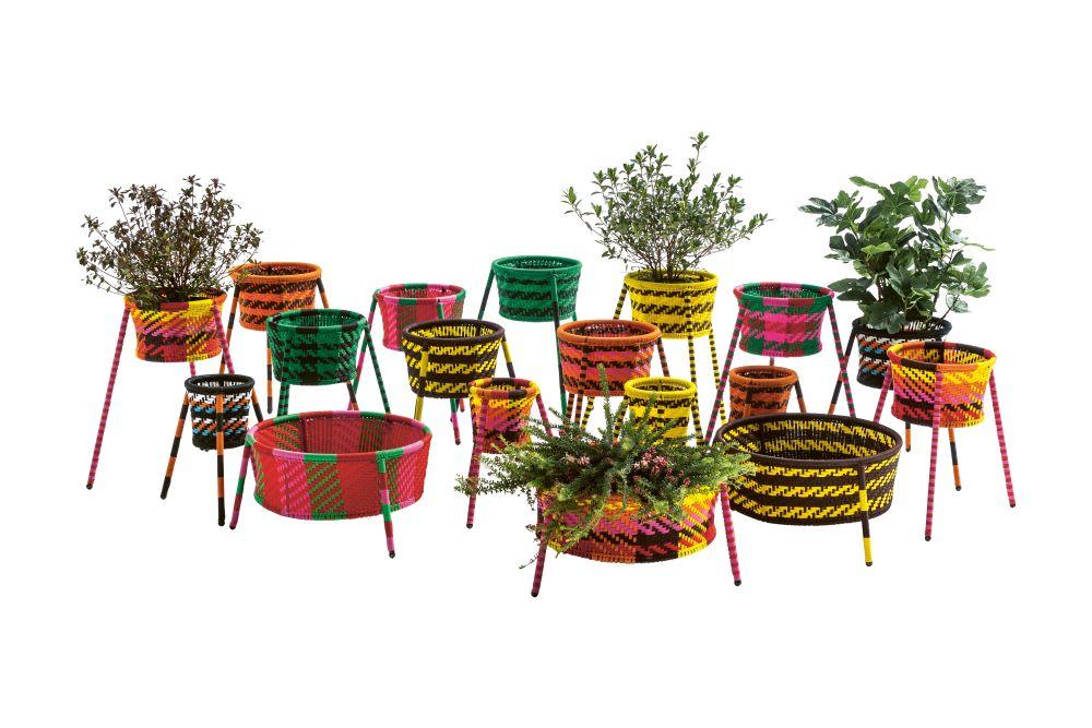 Jardin Suspendu Set of 2 Boxes by Moroso