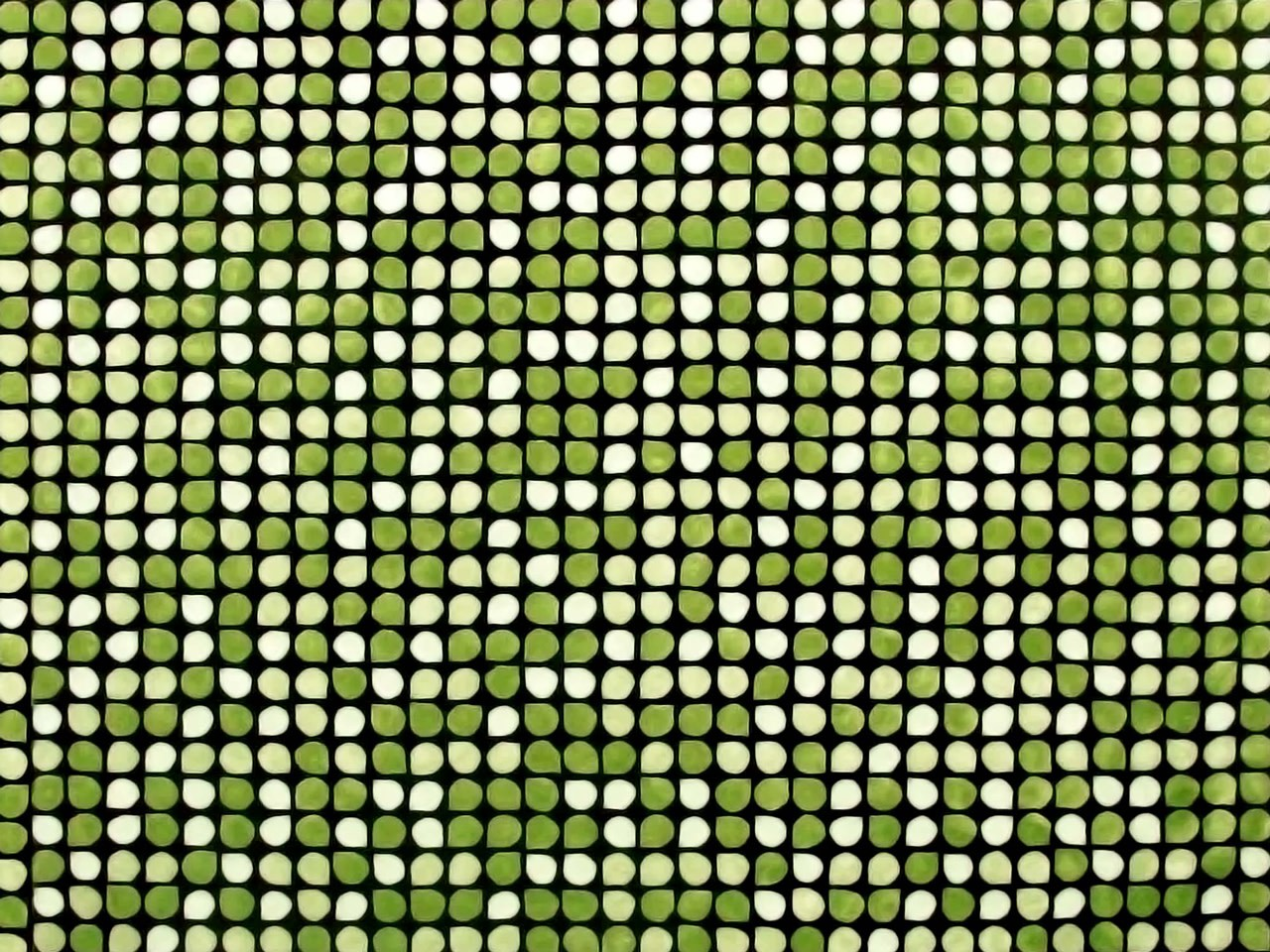 Lucky Rectangular Carpet One-colour carpet with fixed matching dark greed background and leaves in 3