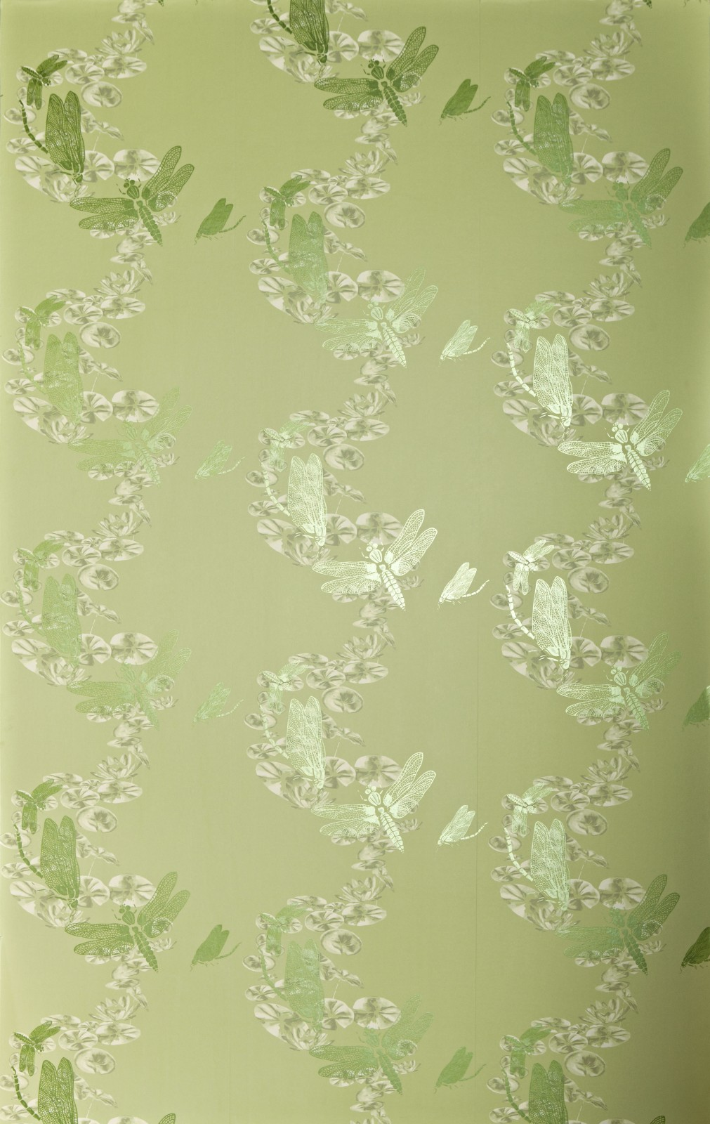 Pewter Dragonfly Wallpaper Apple Green