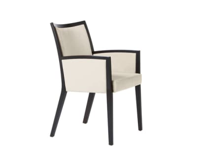 Arvo easy Chair by Dietiker