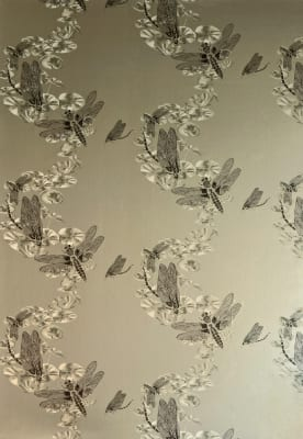 Pewter Dragonfly Wallpaper  Pewter