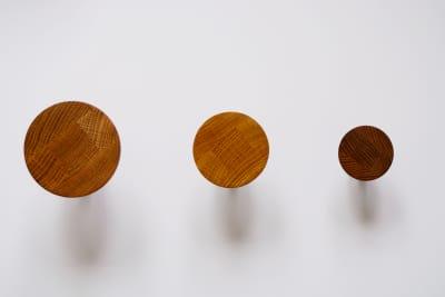 Pin Wall Hooks Set of 3