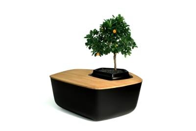 Volcane Coffee Table Wood, Black