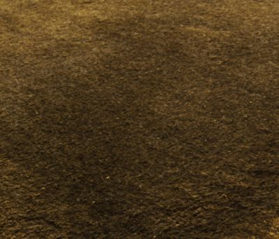 Finery tawny olive, 200x300cm