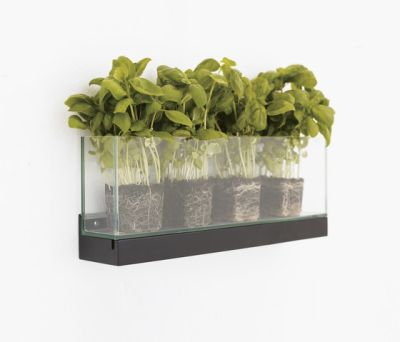 Front Plant FR2 50, FRGLT250 by Karl Andersson