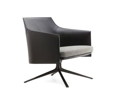Stanford armchair by Poliform