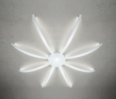 Surfin' ceiling & wall - spider 8 arms by Millelumen