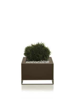 Vela Land Pot Bronze