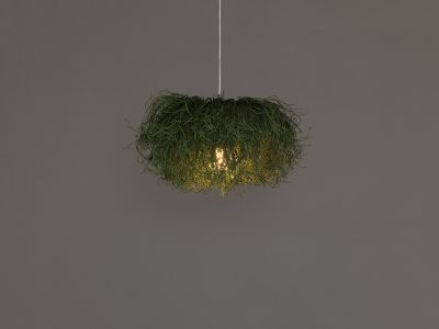 Caos CA04B Pendant Lamp Green, Transparent Cable, Yes