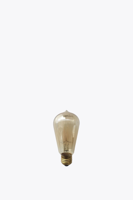 Edison Antique Light Bulb
