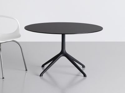 Elephant Occasional Round Table - Fixed Top Polished, Black, 89
