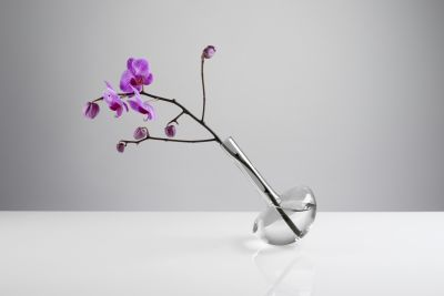 Gauge Vase Stems, Smoke, 22cm High