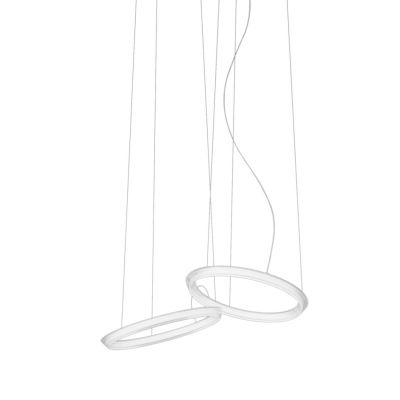 Halo Circular Pendant Light - 2 LEDs