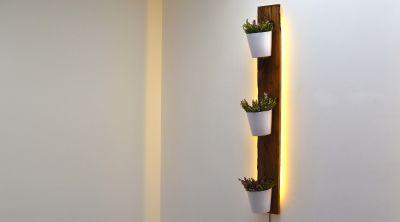 Reclaimed French Oak Planter Backlit