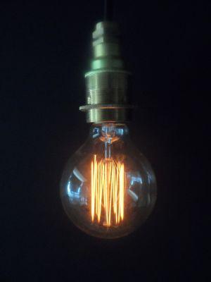 Vintage Cage Globe G80 Lightbulb