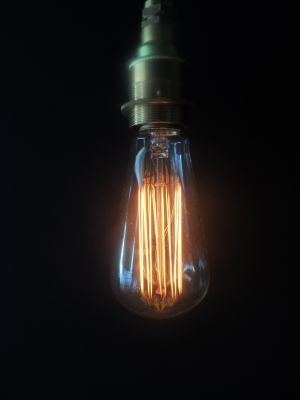 Vintage Edison Lightbulb