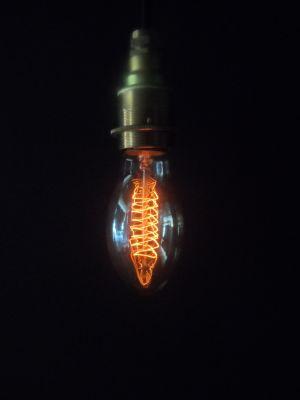 Vintage Oval Lightbulb