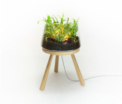 Planta Small PC859 by Brokis
