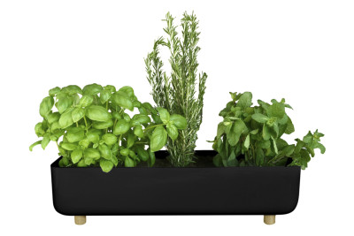 Blume Flower Pot Black