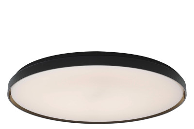 Clara Ceiling/Wall Light Black