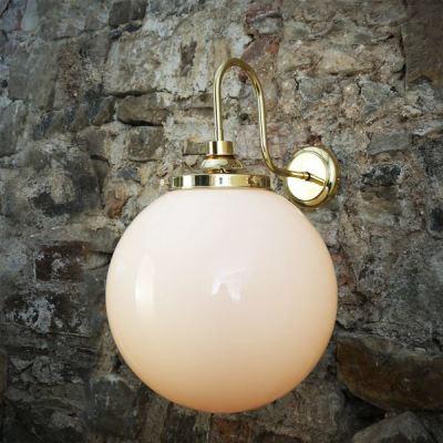 Pelagia Swan Neck Wall Light Polished Brass