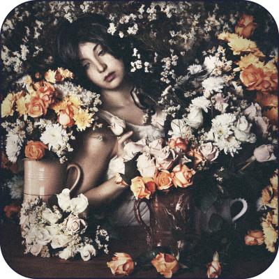 Rose Garden Rug Rose Garden Rug