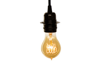 Vintage Pear Light Bulb