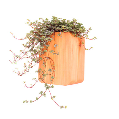 Wall Mounted Cedar Planter Wall mounted cedar planter SMALL