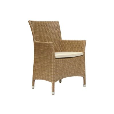Florida Armchair by Rausch Classics