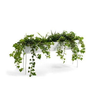 Green Pedestals by OFFECCT