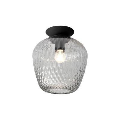 Blown SW5 Ceiling Light - set of 2 Silver lustre