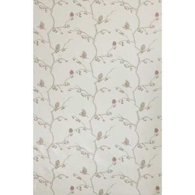 English Robin Fabric  Parchment