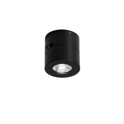 Favilla Ceiling Light Matt black, 2700K, 22°