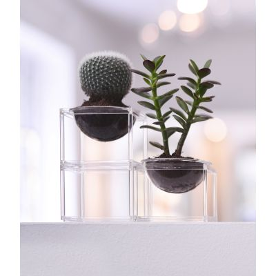 MINI PLANTER SET - 3 PIECES, CLEAR FRAME MINI PLANTER SET - 3 PIECES, CLEAR FRAME