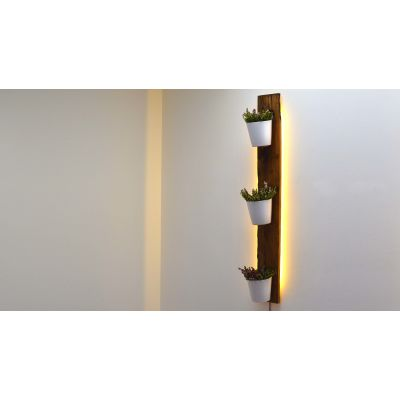 Reclaimed French Oak Planter Backlit