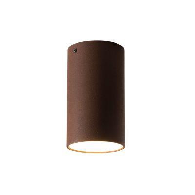 Roest Ceiling Light
