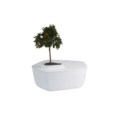 Volcane Coffee Table White