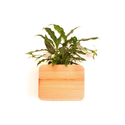 Wall Mounted Cedar Planter Wall mounted cedar planter Large