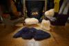 Sheepskin Rug in Navy