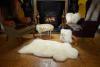 Sheepskin Rug in Ivory