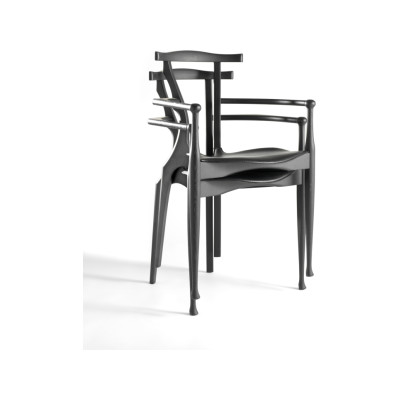 Gaulino Dining Chair Hide Black C10