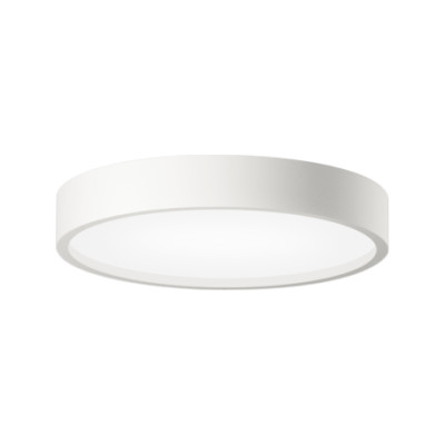 Plus Surface-mounted Ceiling Light Yes