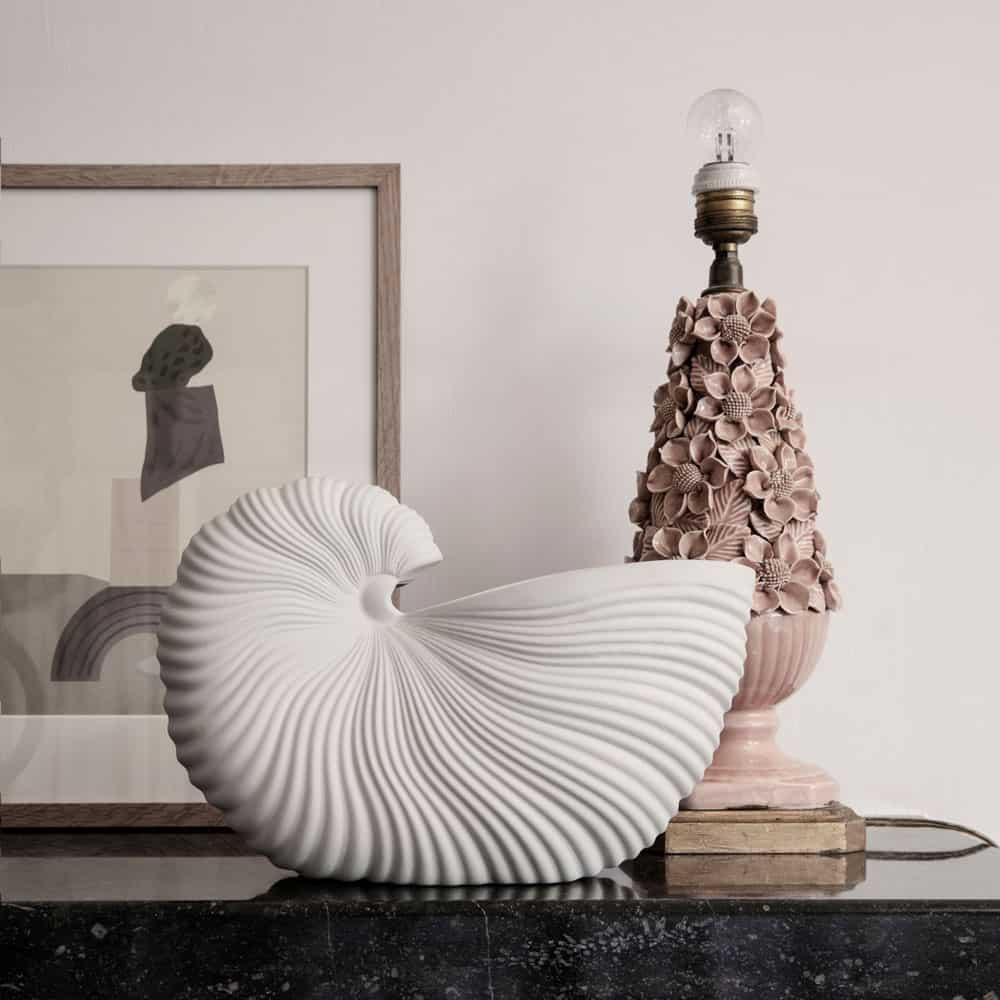 Shell Shapes: motifs abstracting life under the sea