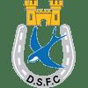 Dungannon Swifts FC