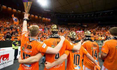 Speltips: Handbollsligan 2018/2019, toppen