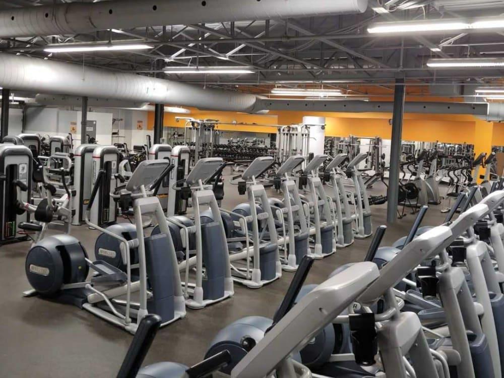 ÉconoFitness Montréal - Lasalle (boul. Champlain) 24/7 gym