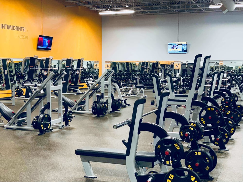 ÉconoFitness Québec - Lévis 24/7 gym