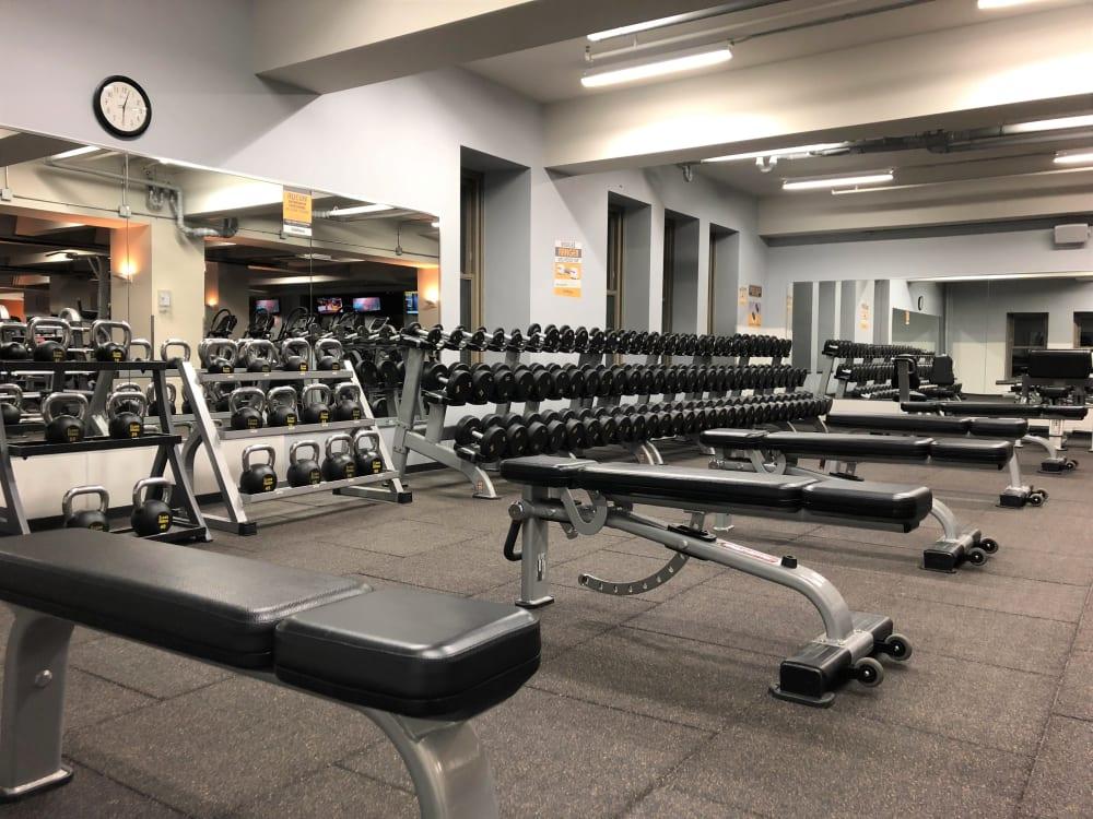 ÉconoFitness Montréal - Ville-Marie (Ontario/Atateken) gym