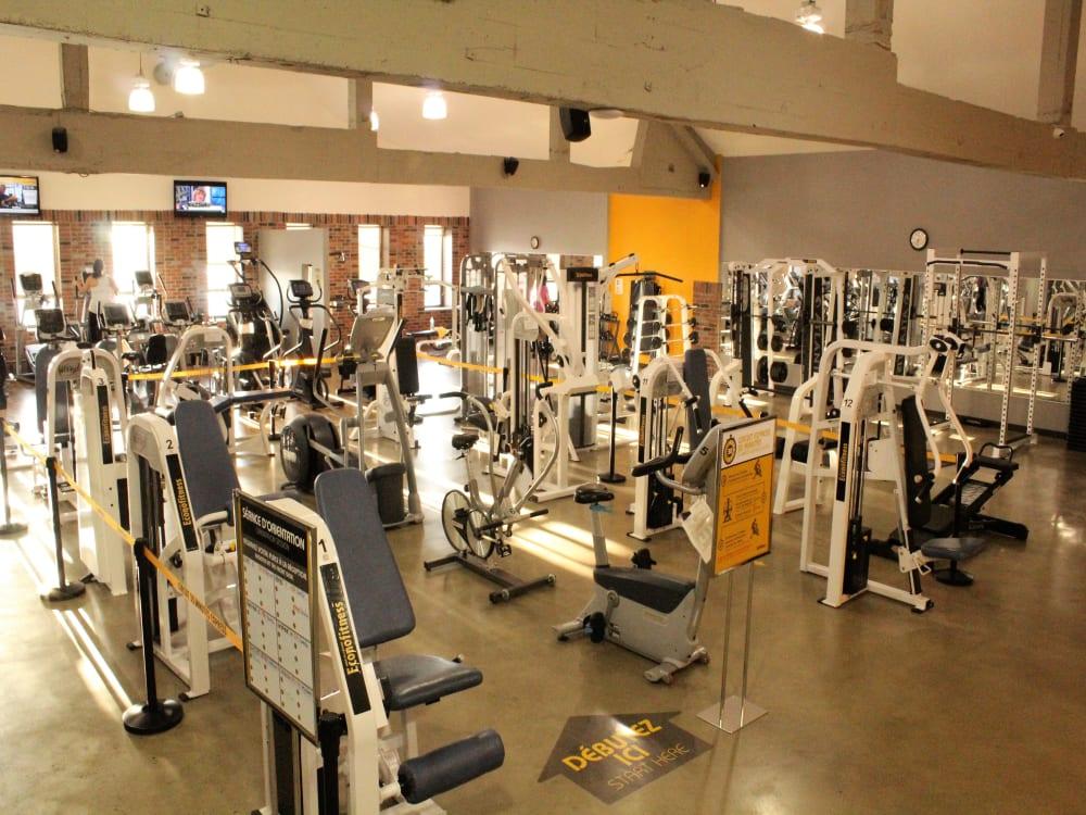 ÉconoFitness Montréal - Rosemont (Masson) 24/7 gym