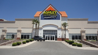 Chihuahua, Chihuahua Ashley Furniture HomeStore 9974600